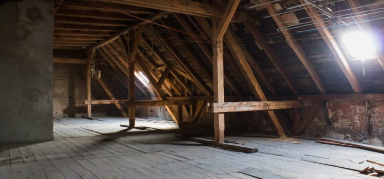 What should i store in my attic